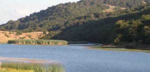 Park Nebrodi