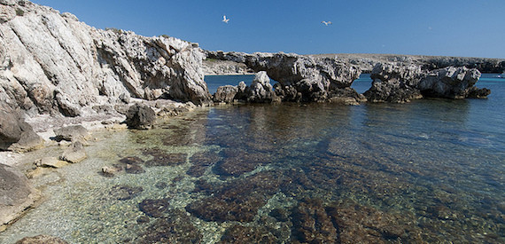 Favignana beaches