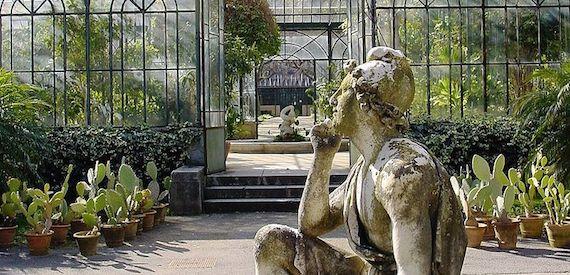 Vacanza con i bambini a palermo una visita all orto botanico for Idea garden monselice orari